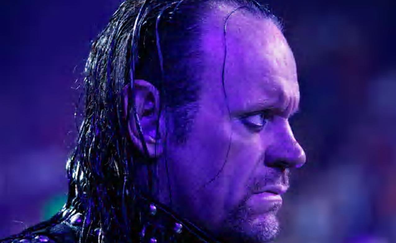 Undertaker wwe 2013