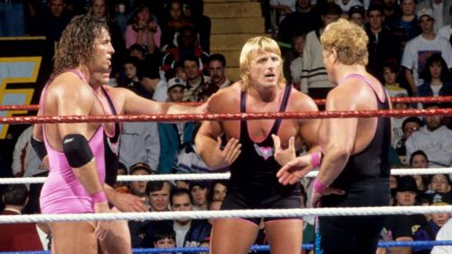 Bret and Owen Hart