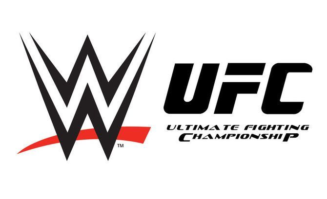 Image result for WWE UFC