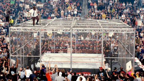 Hell in a Cell has played host to many of WWE's top performers.
