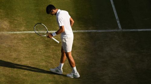 Tennis faithful did not see the best of Djokovic in 2017 due to injuries