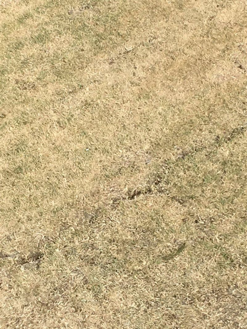 an image of a crack on the Wanderers pitch