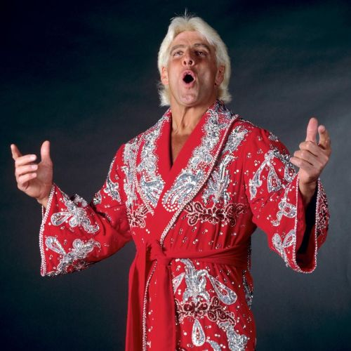 Ric Flair - arguably the best heel of all time.
