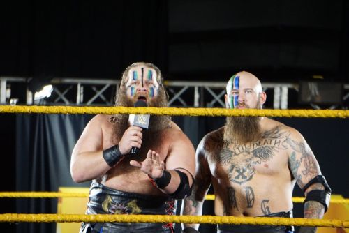 Enter captRaymond Rowe and Hanson form War Machine, a dominant tag team in Ring Of Honor...