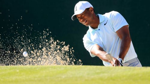 TigerWoods - Cropped