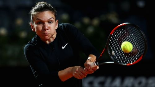 Halep_cropped