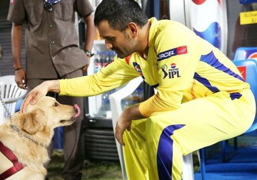 Captain Cool harbours an undying love for dogs