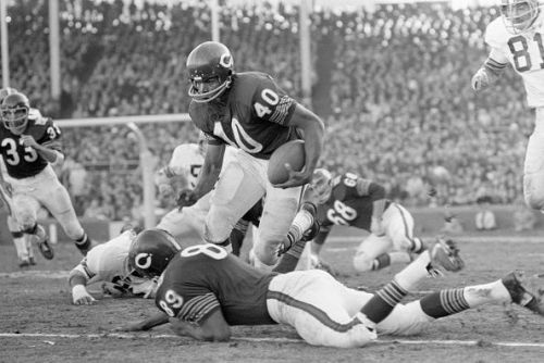 Bears Gayle Sayers Rushing During A Game