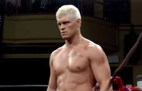 Cody Rhodes is important as a wrestler, but even more so as a businessman.