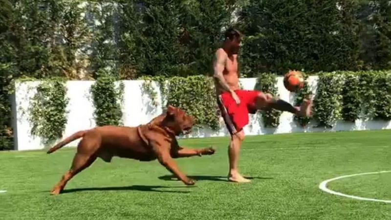 Messi makes his dog go through what so many defenders have