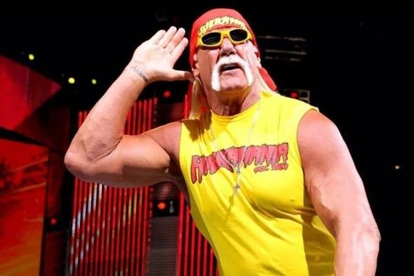 The Hulkster Hulk Hogan