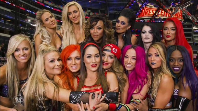 The Bella Twins have been shunned