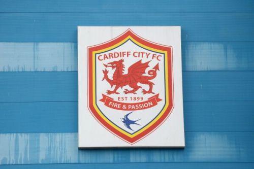 Cardiff City v Chievo - Pre Season Friendly