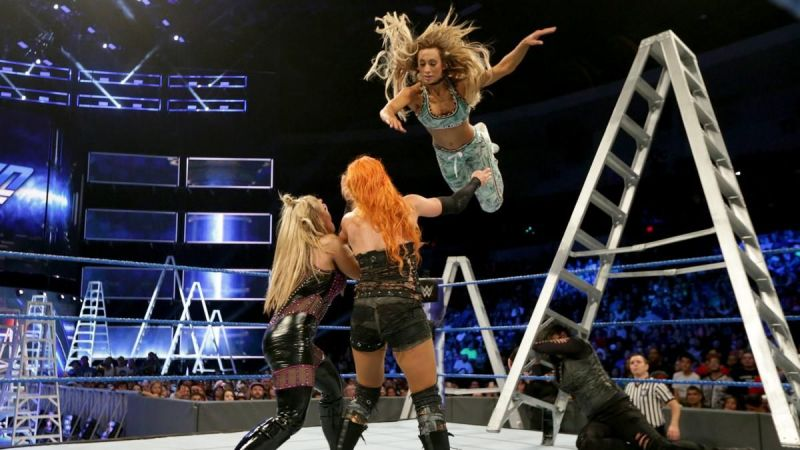 The second ever women's MITB Ladder Match...