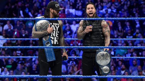 The Usos have made WWE their own, winning the tag team championships numerous times!