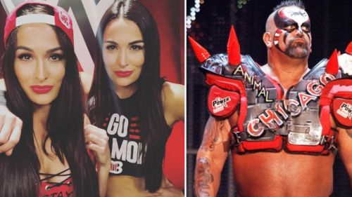 In this article, we look at 3 WWE wrestlers you didn't know are related...