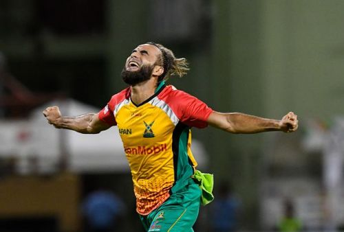 The cricket marathon winner