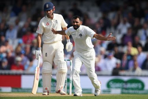 Mohammed Shami has been consistent, persistent, and effective for the Indian Cricket Team