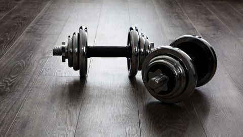 Dumbbells and Home Workout
