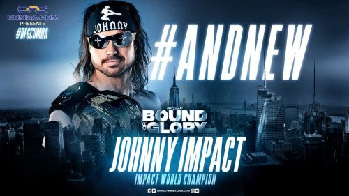 A brand new Impact Wrestling champion was crowned as Bound For Glory
