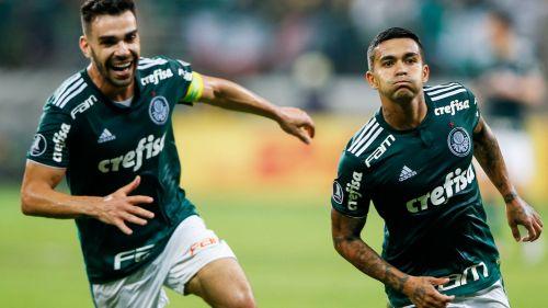 Palmeiras - Cropped