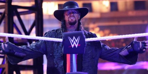 The Undertaker hasn't agreed to be part of Survivor Series