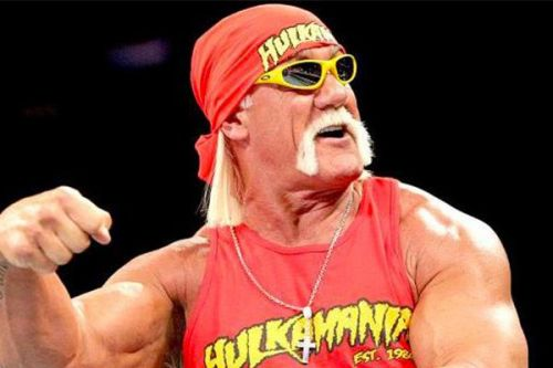Hulk Hogan made his triumphant return to WWE at Crown Jewel earlier this month.