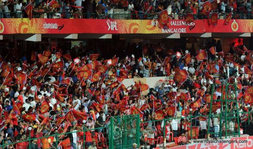 The Bengaluru crowd at the M. Chinnaswamy Stadium is electric