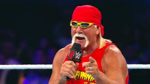 Yes, Hogan actually had another finisher that wasn't the leg drop...