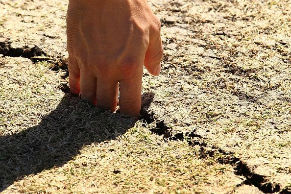 There have been a few unplayable pitches in the history of cricket