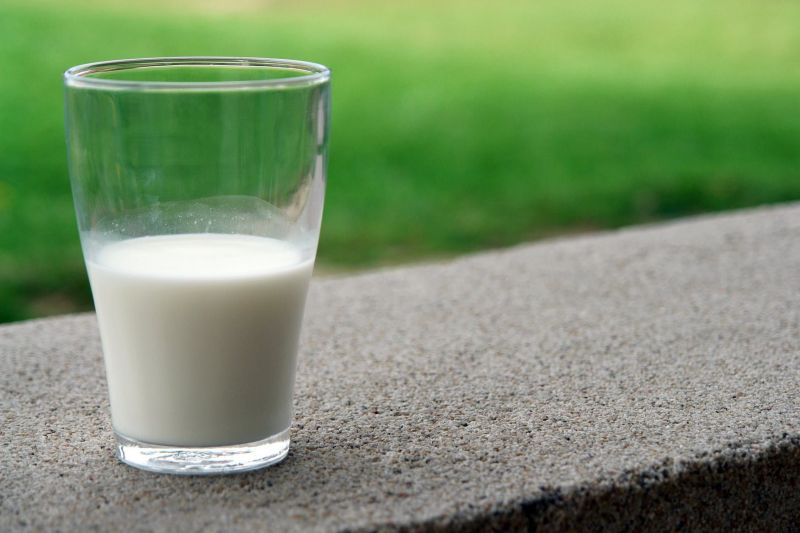 Milk contains all the essential amino acids required by the body