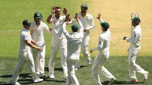 Australia celebrate Mitchell Starc's first wicket