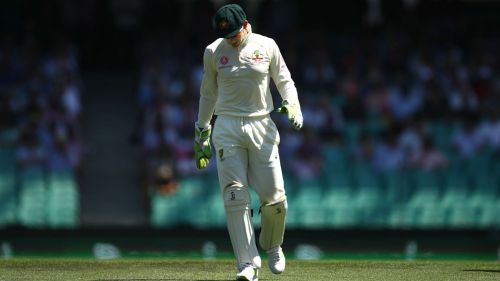 Tim Paine - cropped