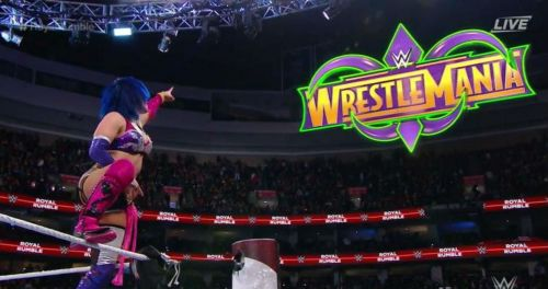 Asuka won the inaugural women's Royal Rumble.
