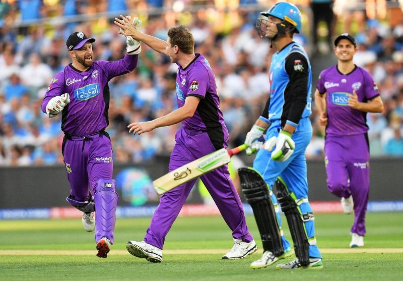 Matthew Wade has led his side exceptionally well in this campaign