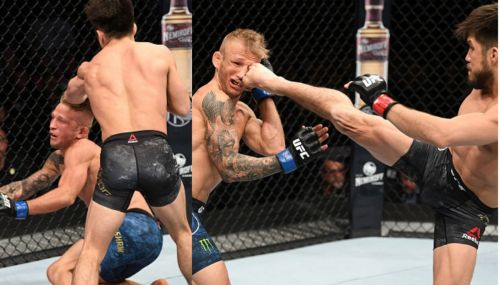 Cejudo and Dillashaw faced each other in a huge main event!