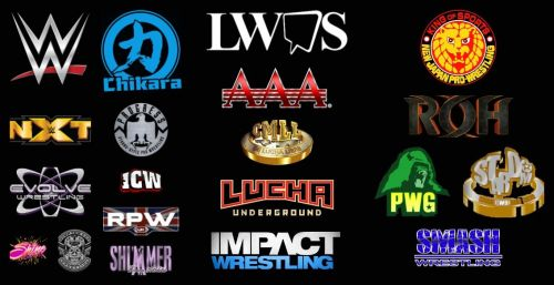 There are almost too many promotions to follow which is great for fans of pro wrestling.