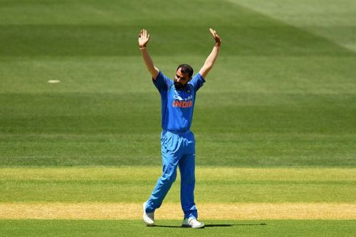 Shami is impressing in his second coming as an ODI bowler