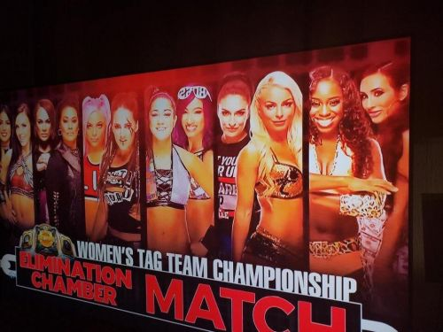 Here's the alleged full line-up for the Women's Tag Team Title Elimination Chamber Match