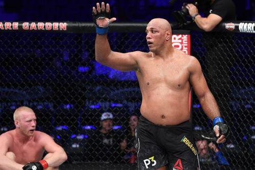 Marcos Rogerio de Lima has returned to Heavyweight