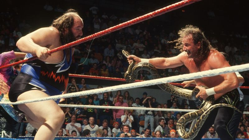 Image result for jake roberts wwe