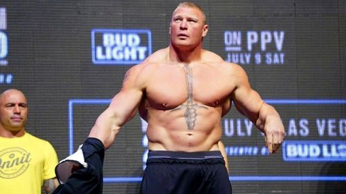 Image result for Brock Lesnar ufc