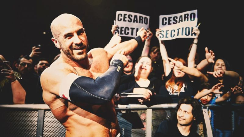 Image result for cesaro section""