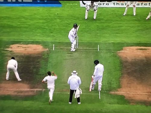 Wellington Greenish Pitch