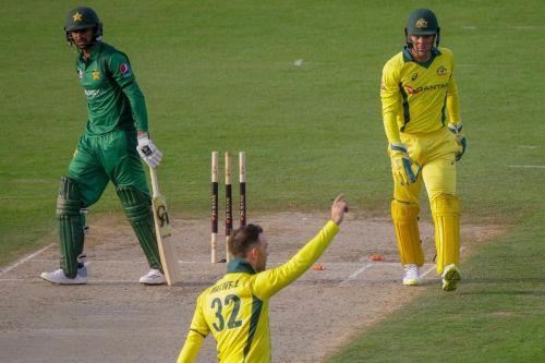 Glenn Maxwell celebrates after dismissing Shoaib Malik