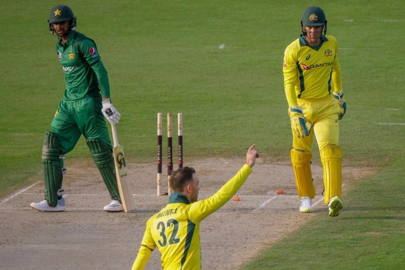 Glenn Maxwell celebrates after dismissing Shoaib Malik