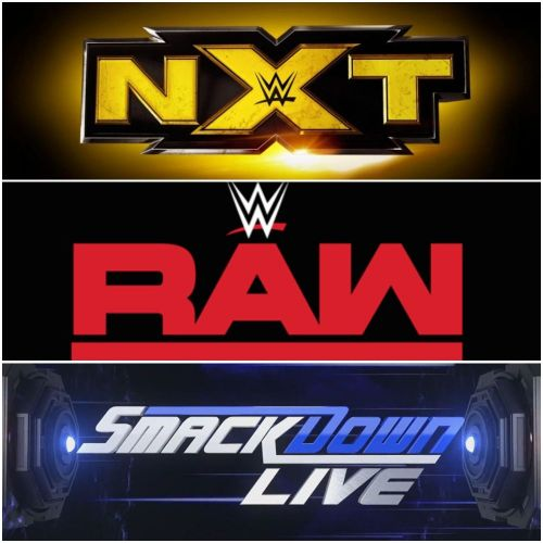 What if NXT becomes the 3rd Official Brand?