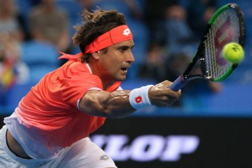 David Ferrer will retire from professional tennis by the end of this year.