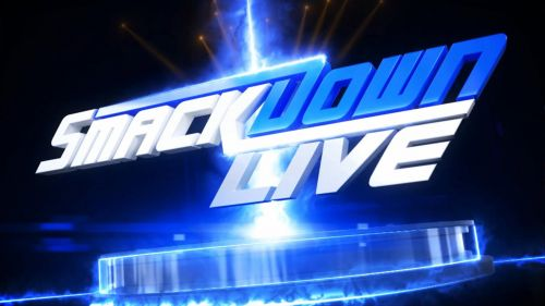 Image result for smack down live logo