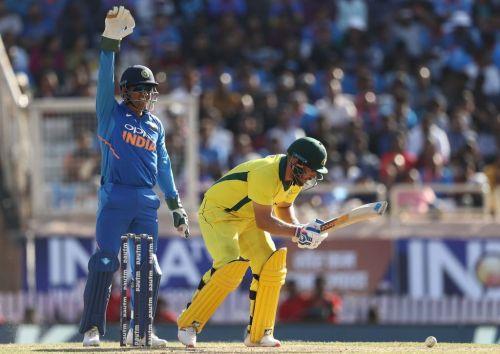 Finch wicket